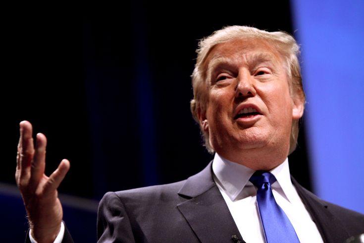 Článek: Trump sníží daně a zruší regulace.