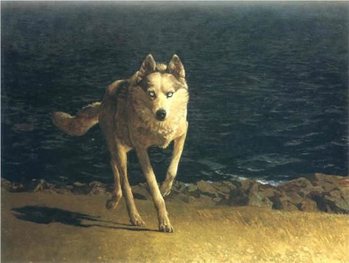 Wolf Dog - Jamie Wyeth