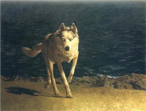 Wolf Dog - Jamie Wyeth