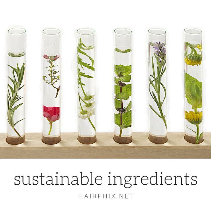 Sustainable ingredients