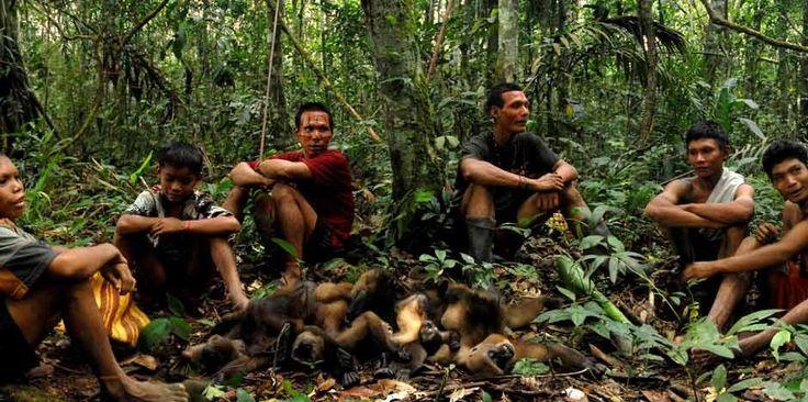 Los Nukak- Maku  Viven en el Guaviare