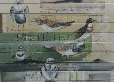Jason Hicks - Shore birds