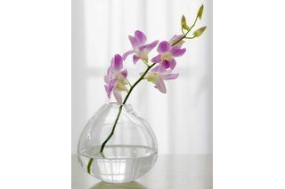 Professional florists use special, and expensive, products such as clear resin and craft water to give the appearance of water in vases of artificial flowers. If you like to design your own silk flower arrangements, why not make your own liquid vase filler as well. In addition to creating the look of water in your vase, the filler will serve as a...