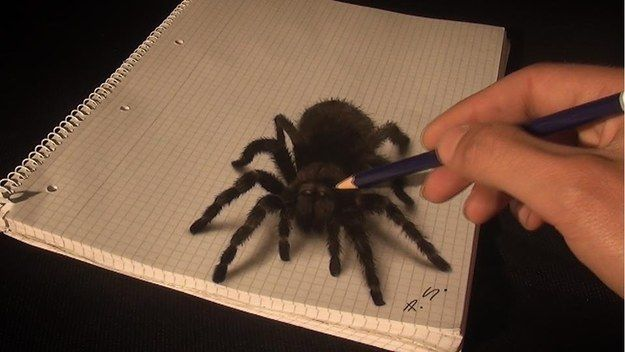 This is the work of Stefan Pabst. | This Man's 3D Drawings Are So Incredible, You'll Think They're Alive