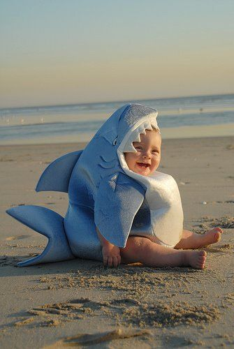 Funny baby: Baby Sharks, Great White Sharks, Babies, Halloween Costumes, Baby Costumes, Sharks Costumes, Kids, Sharks Week, Cute Sharks