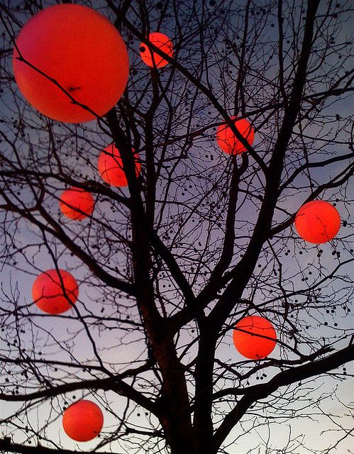yes: Xmas Trees, Paper Lanterns, Trees Lanterns, Christmas Lights, Home Decor, Red Balloon, Balloon Tree, Christmas Trees, Red Lanterns