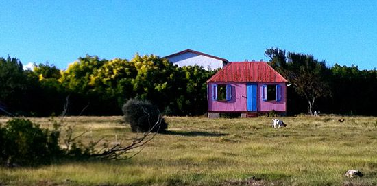 anguilla-pictures-caribbean-charming-cottage-goats.jpg 550×271 pixels