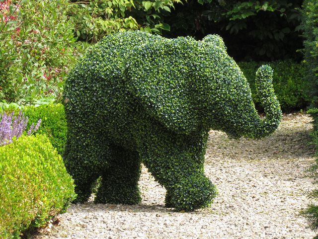 Topiary Elephant, Levens Hall Gardens