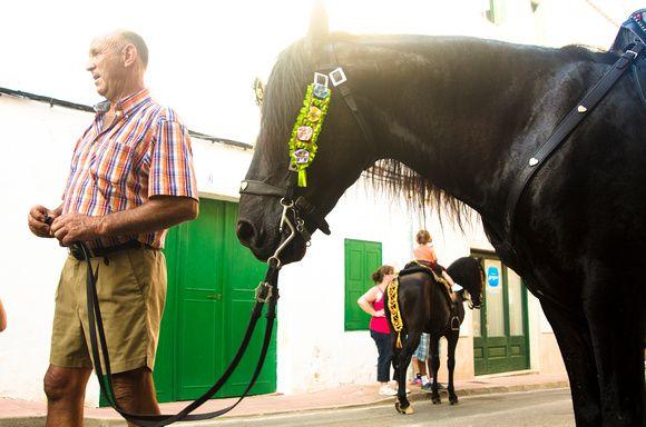 Horse at fiesta in Es Castell