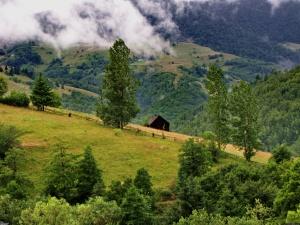 Trip to Transylvania