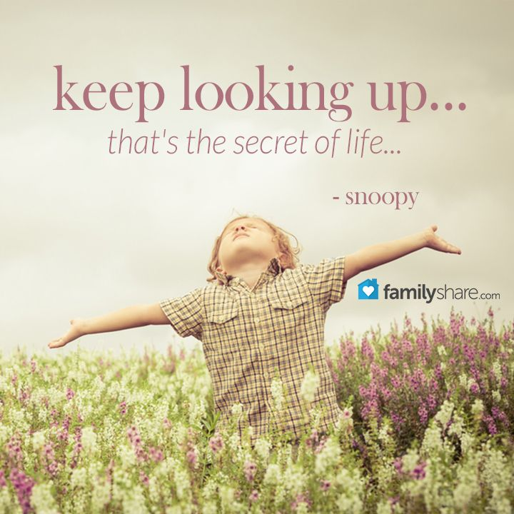 Snoopy Keep Looking Up Quotes