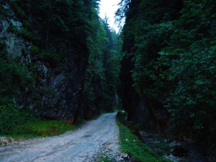 #Mountain #trips in Romania http://img.goobix.com/ro/peisaje-munte-romania/peisaje-munte-romania-muntii-carpati-29.jpg