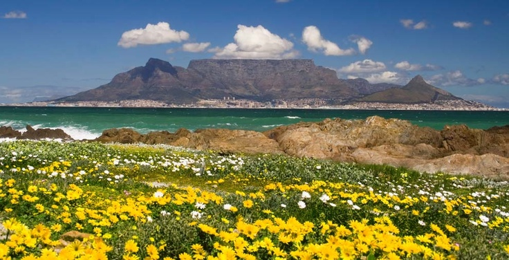 Colourful Cape Town.The city has several well-known natural features that attract tourists, most notably Table Mountain..etc.