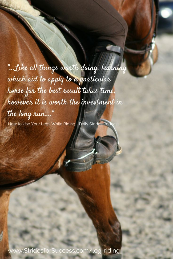 1000 Images About Words On Pinterest Horse Quotes