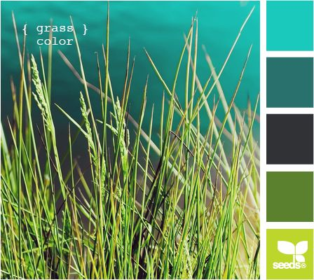 Grassy Tones: Dark Teals, Pool Blue, Grass Green and Lime Green