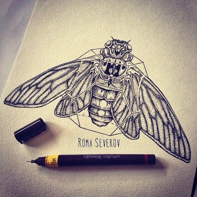 cicada tattoo books worth reading pinterest beautiful form 4 and design. Black Bedroom Furniture Sets. Home Design Ideas