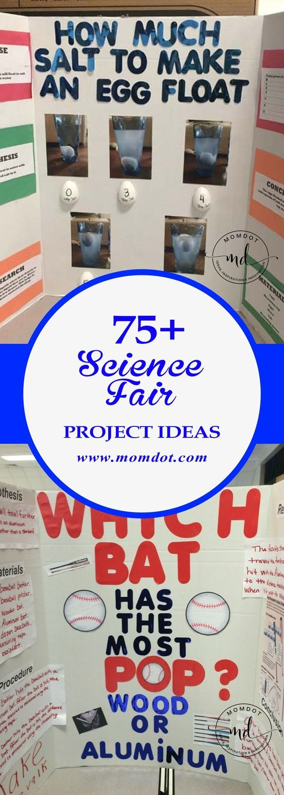 "The words ""Science Fair"" can strike fear in the heart of parents, but here are o... 2"