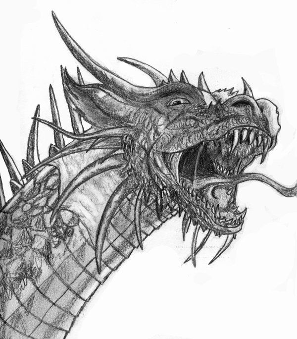 20 best Dragon Design images on Pinterest Dragon design