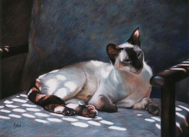 Dappled cat- Jezebel by Astrid Bruning & 88 best dappled light images on Pinterest | Landscapes Morning ... azcodes.com