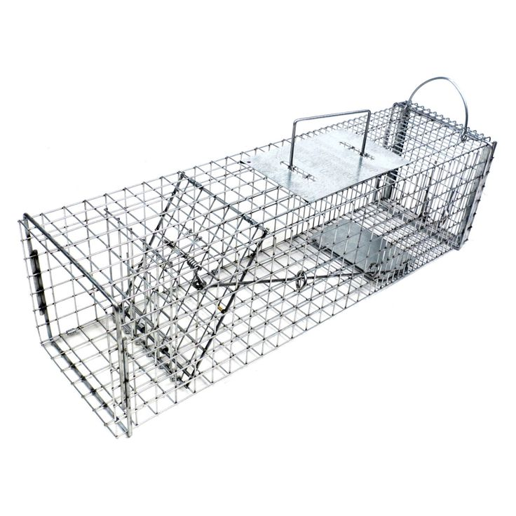 Tomahawk Live Trap Flush Mount Skunk Trap with Easy Release Back Door - 605F