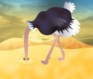 (2016-07) Gemme hovedet i sandet