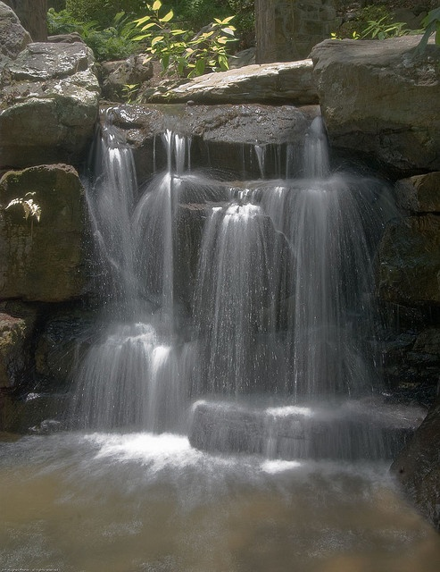Falls At Garvan Woodland Gardens Hot Springs A
