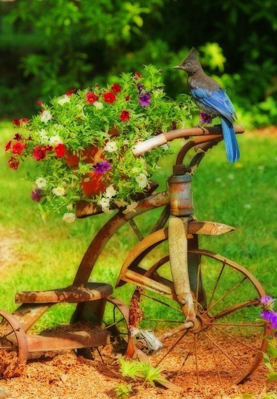 Die 25+ Besten Ideen Zu Blumenbeet Einfassung Auf Pinterest ... Einfassungspflanzen Gestaltungsideen