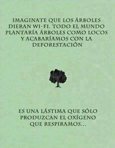 Roughly translated...  IMAGINE THAT TREES COULD GIVE WiFi.  ALL THE WORLD WOULD PLANT TREES LIKE CRAZY AND WE WOULD END DEFORESTATION.  IT IS A SHAME THAT THEY ONLY PRODUCE THE OXYGEN THAT WE BREATHE.................
