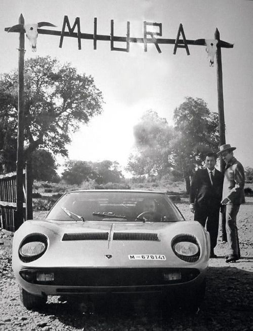 Delicieux Photou0027s From Dosso Museum   Spanish Don Eduardo Miura On His Ranch Together  With Ferruccio Lamborghini And Both A Miura Car And Miura Bulls.