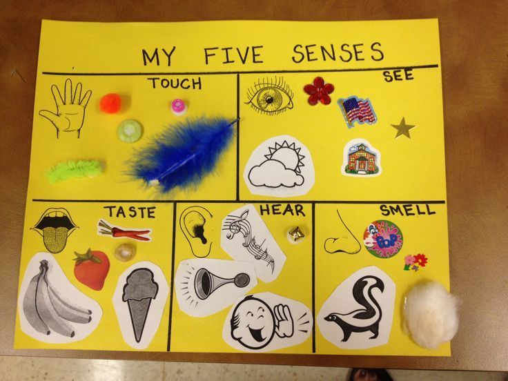 five senses ideas for preschool | 5 Senses Preschool Craft
