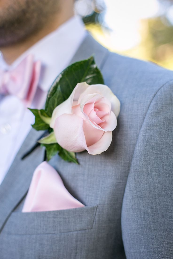 sydney royal botanic gardens from silk truffle photography pink boutonnieresimple rosewedding - Garden Rose Boutonniere