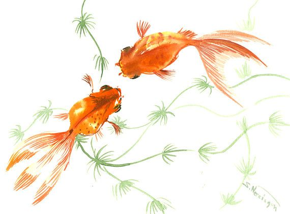 Artwork Two Goldfish wall art Koi fish art original, by Mr. Suren Nersisyan IF YOU PURCHASE MORE THAN ONE ARTWORK FROM MY STORE YOU PAY FOR SHIPPING ONLY ONCE!!!!  You can always return the artwork within 7 days after you receive it! No questions will be asked! Meet the owner of ORIGINALONLY Learn more about the shop and process