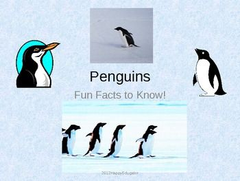 Penguins - Fun Facts About the Life of a Penguin PowerPoint - lots of interesting facts and information about penguins!