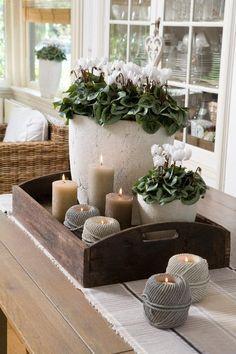 Foto: Een leuke combinatie van planten en kaarsjes . Geplaatst door daman op Welke.nl