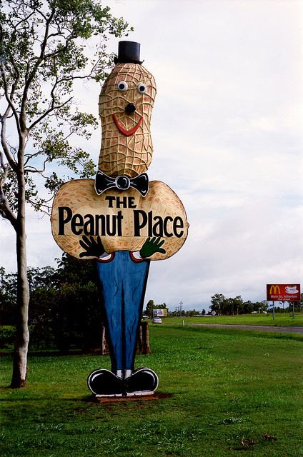 The Big Peanut, Tolga, Queensland, Australia. This about 10 kl from my home on the Atherton Tablelands . Val henderson