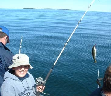 80 best fishing images on pinterest fishing fishing for Deep sea fishing los angeles