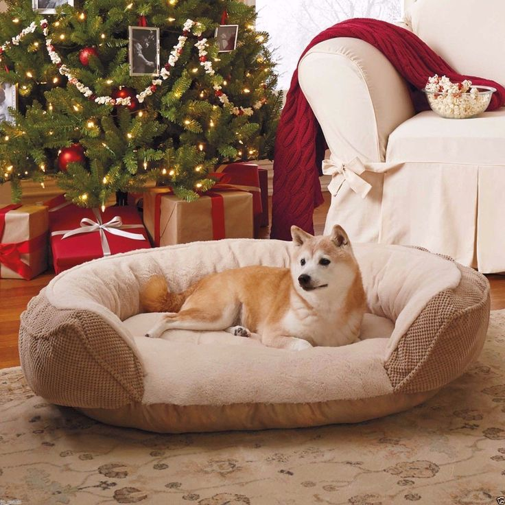 Large Pet Dog Puppy Cat Bed House Nest Pad Cozy Warm Orthopedic Foam Cushion