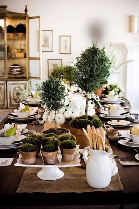 A topiary garden on the table. Love using different types and heights of topiaries.