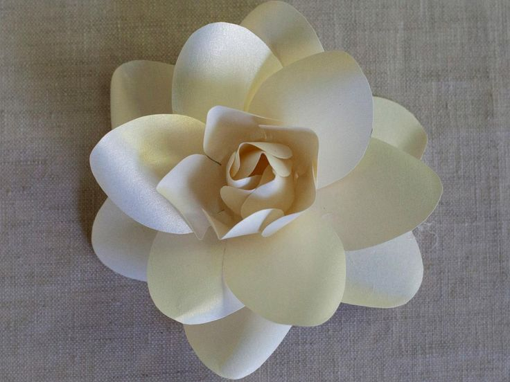 Make paper flowers with DIY Network's free downloadable templates and instructions.