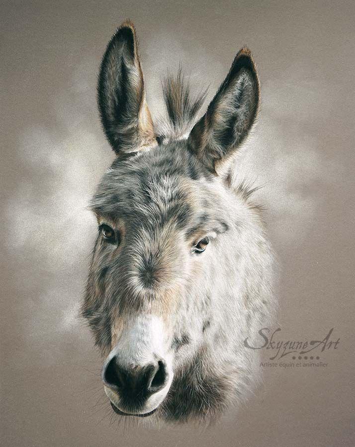 Galerie Artiste Animalier Skyzune Art Peinture Et Pastel Art Animalier Ane Dessin Peinture Renard
