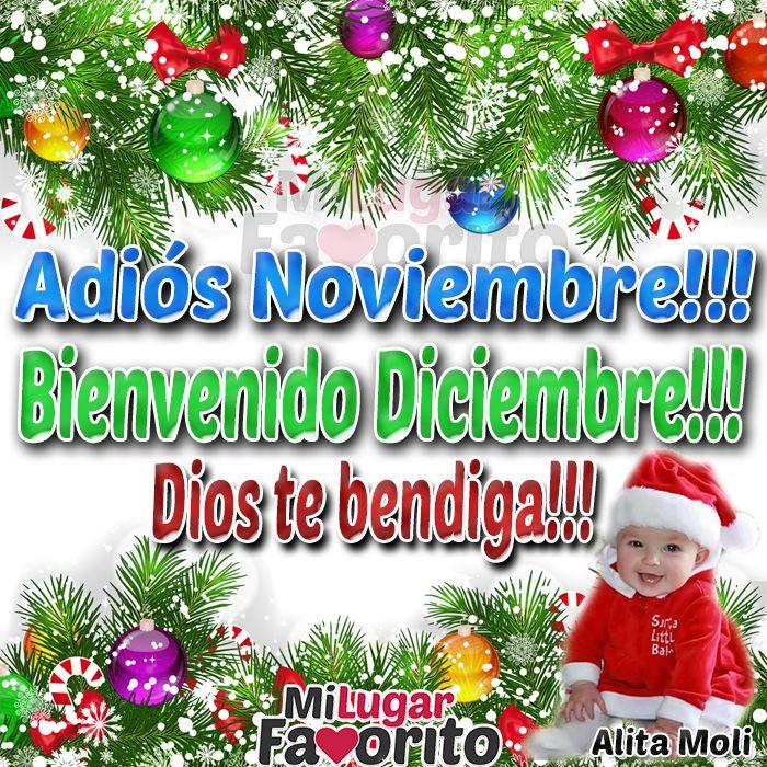 Adiós Noviembre!!! Bienvenido Diciembre!!!