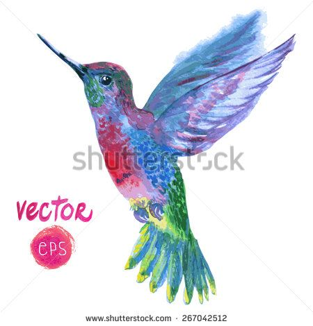 17 best images about colibries on pinterest hummingbirds watercolor