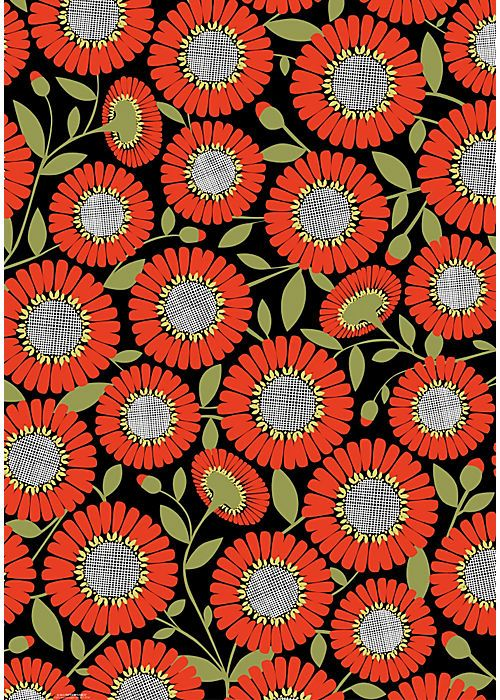 I love how these orange flowers pop with the gray centers and black background!
