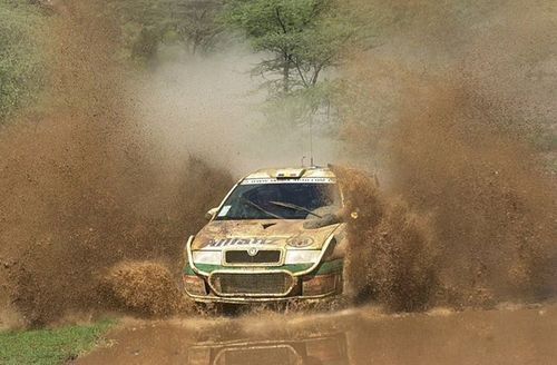 Skoda Octavia WRC Rally Car (my little dargling comes from this proud ancestry ...)