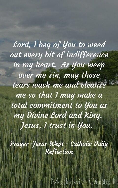 Prayer - Jesus wept -  Catholic Daily Reflection