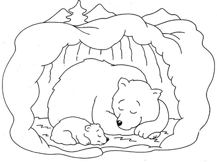 Картинки по запросу kleurplaat beer winterslaap