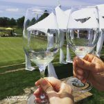 Nor Cal Day Trip: Sonoma-Cutrer Vineyards