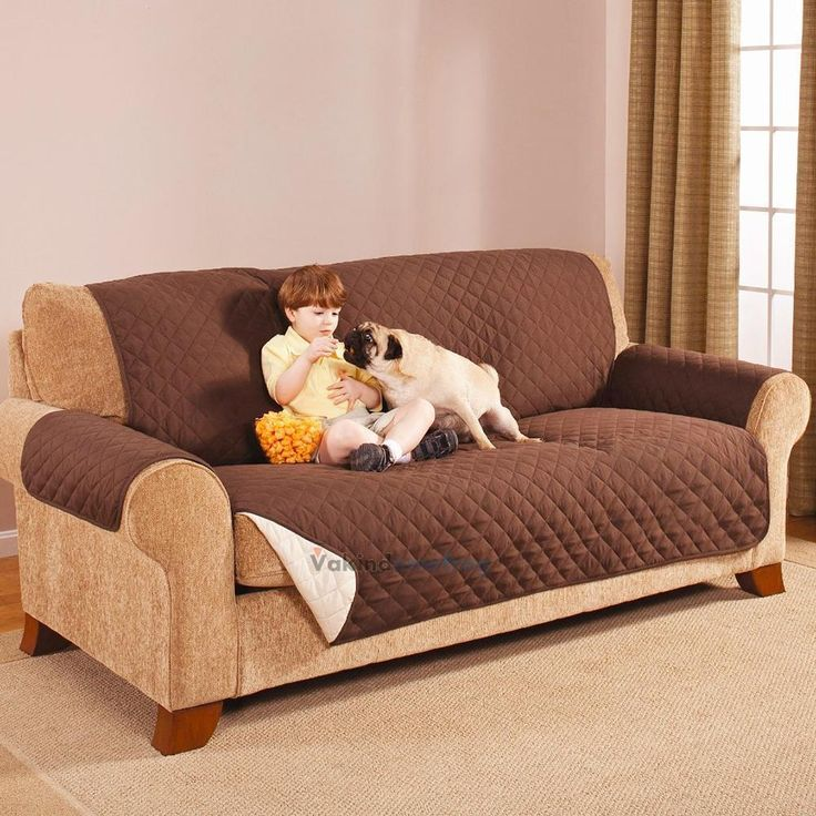 Best 25 Couch protector ideas on Pinterest Pet couch cover Pet
