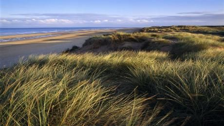 Formby - Visitor information - National Trust