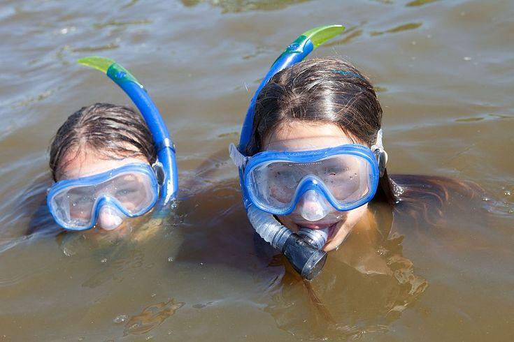 ook snorkelen kan